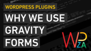 We recommend Gravity Forms for WordPress