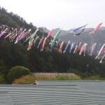WR250Xで兵庫県生野銀山湖ツーリングっ!(鯉のぼりイベント)