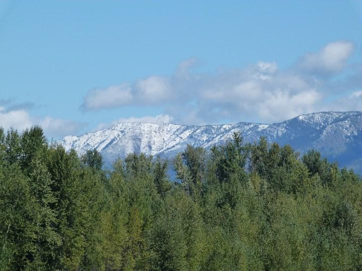 New snow on the mountains around Fernie