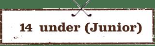 14-under