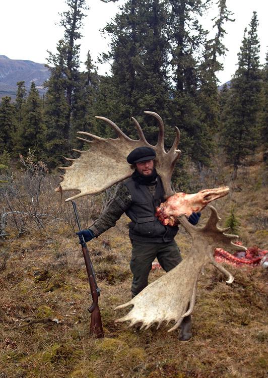Alaskan Moose Size : alaskan, moose, Alaskan, Moose