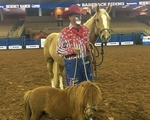 The Rodeo Man Who Hangs Out in a Coors Can 150x120