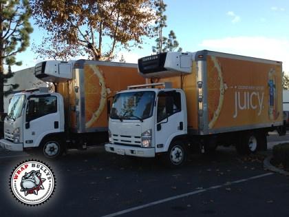 Zico Isuzu Box Truck Wrap