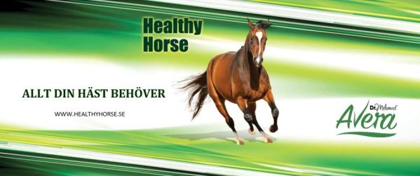 LOGO HEALTHY HORSE