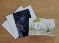 Greeting cards, front