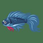 【寵社】釣魚