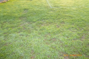 Northmead Playing Fields Pitch Inspection 14th January 2016