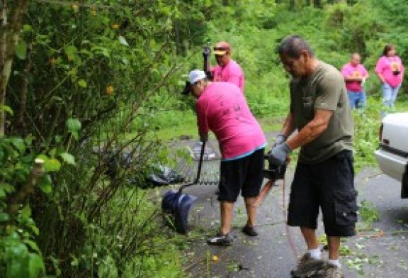 12th Annual Cherokee Day of Caring planned