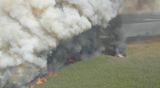 N.C. Forest Service battling multiple wildfires across state