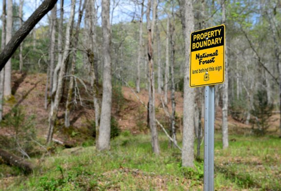 Federal Collection Action Against Convicted Fraud Defendants Nets 177-Acre Addition To Pisgah National Forest