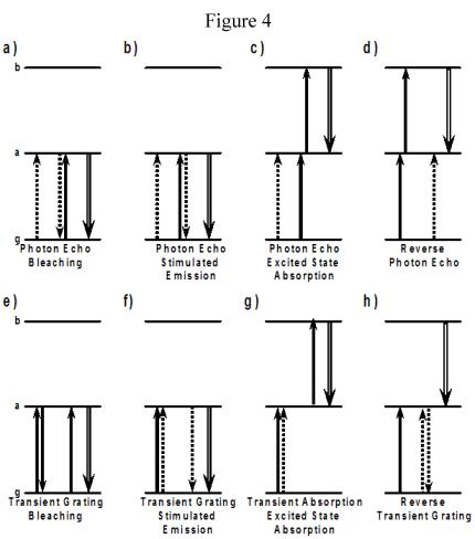 Photon Echo, Stimulated Photon Echo, Transient Grating