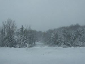 A Snowy Drive