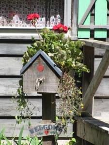 In a Southampton garden
