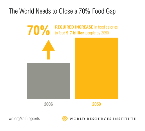 small resolution of we need to close a big food gap