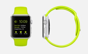 Apple-Watch-Dial-Profile-45