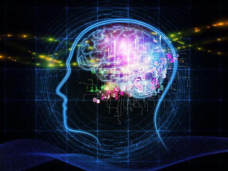 Image, inside brain.