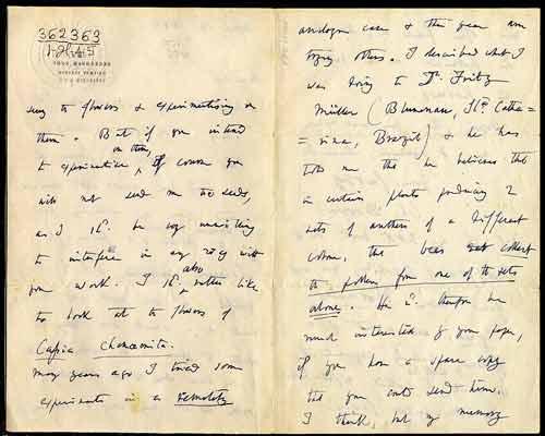 Charles Darwin handwriting
