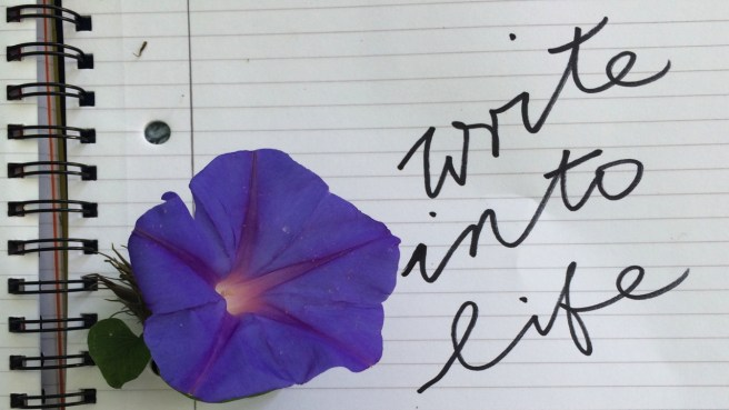 Write into life! A new series of Udemy videos on personal writing and Expressive writing