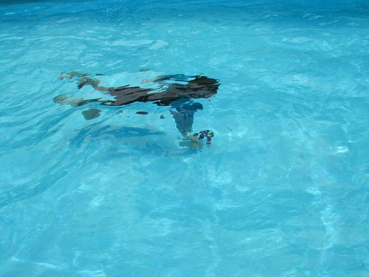 swim-underwater.jpg
