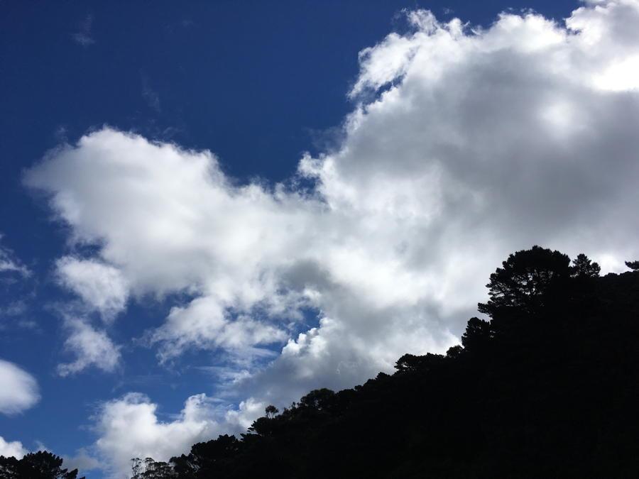My hill: Mt Victoria, Wellington