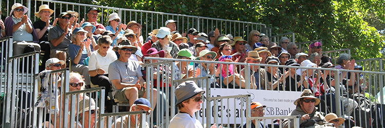 Over-65s music fans at WOMAD New Zealand 2015