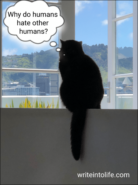 "Photo of a cat with thought bubble saying: ""Why do humans hate other humans?"""