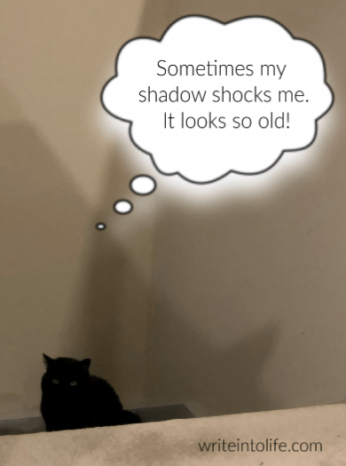 A cat contemplates her shadow and thinks, Sometimes my shadow shocks me. It looks so old!