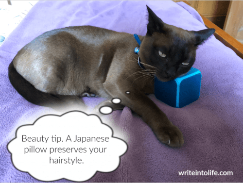 A sleek black cat rests her head on a hard blue block, thinking Beauty tip. A Japanese pillow preserves your hairstyle.