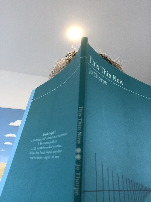 Book of poems by Jo Thorpe, This Thin Now. Light bulb above.