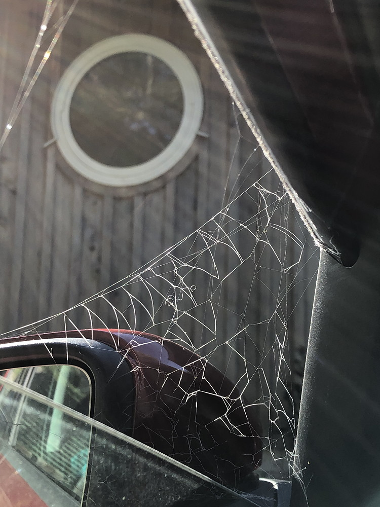 Photo of an old herring-bone patterned spiderweb attached to a car