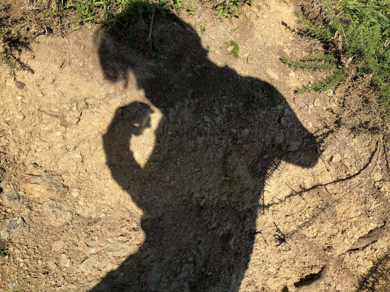 Shadow against clay of an ugly monster