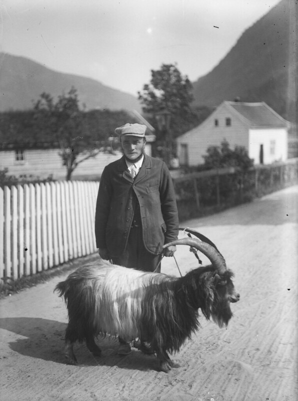 Man and goat, old photo in a small Norwegian town.