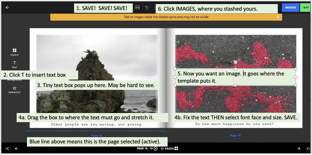 Screenshot of the same pages with numbered notes giving instructions. The instructions are all repeated in the accompanying blog post. No. 1 is SAVE! SAVE! SAVE1!