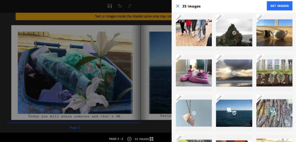 Screenshot of photobook software at work. When you click on the image area of a blank page, a side panel opens on the right. It shows all the images available for this photo-book. You can add new images easily.