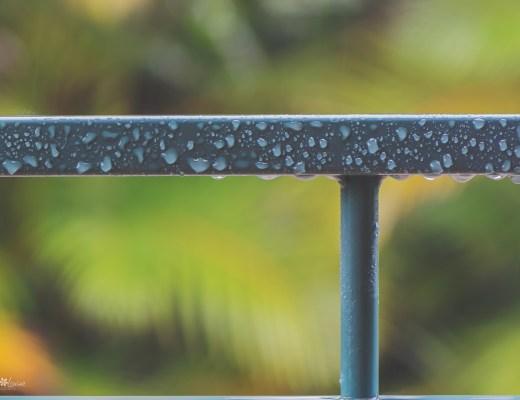 rain, rain drop, raindrops, raindrop