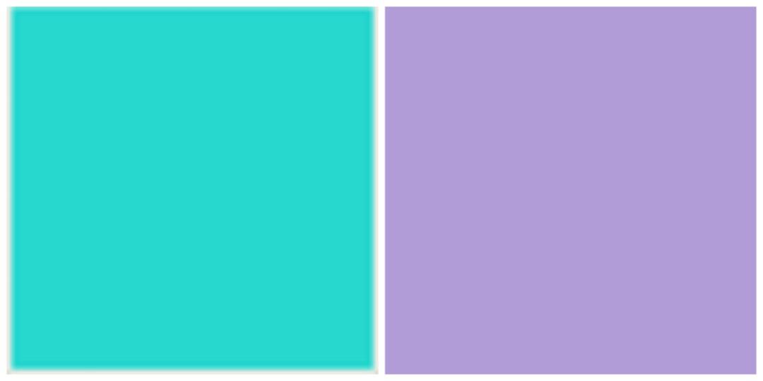 purple, aqua, colour, colours