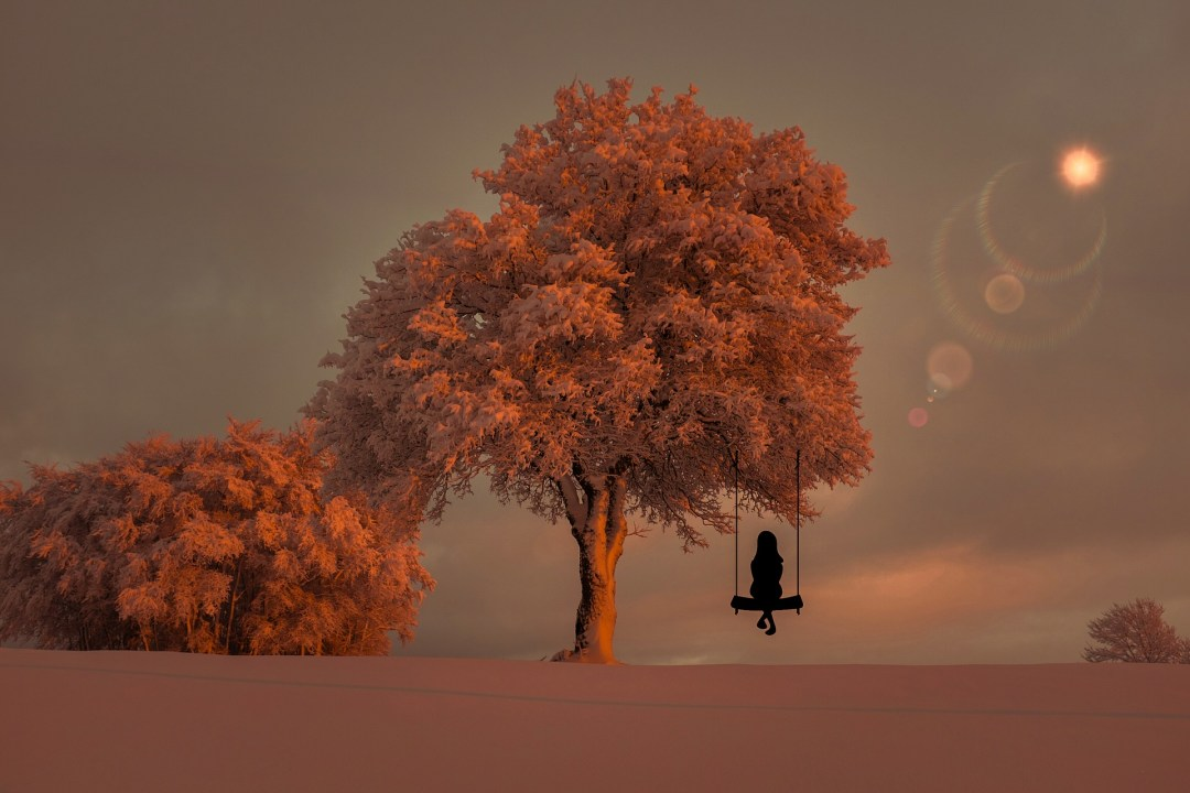 mindful, mindfulness, meditation, solitude, reflecting, swing, tree,