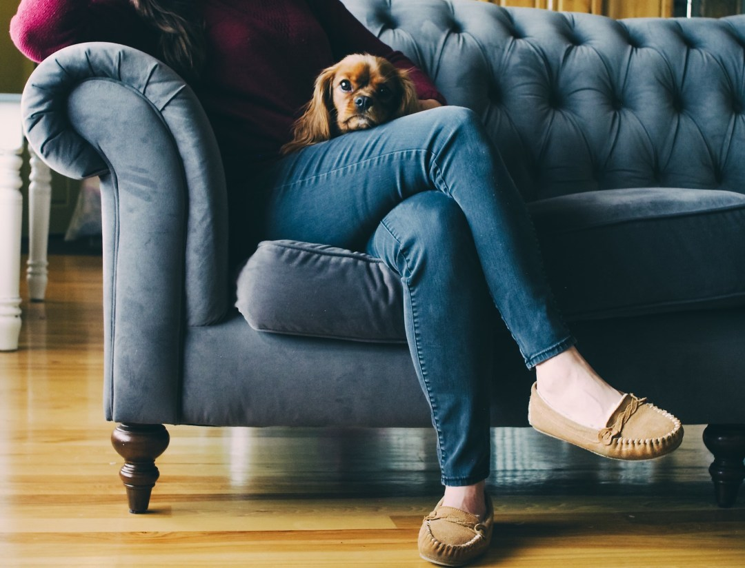 Woman wearing jeans with dog in lap