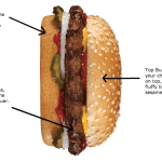 A Novel is a Hamburger (aka The Difference Between TV Scripts and Novels)