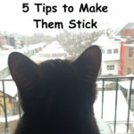 Resolutions & Goals: 5 Tips to Make Them Stick