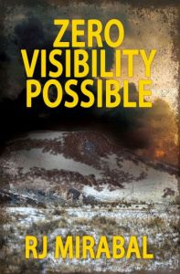 zero-visibility-possible-front-cover-final
