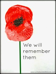 poppy, remembrance, politics