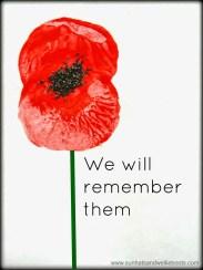 poppy, remembrance, politics