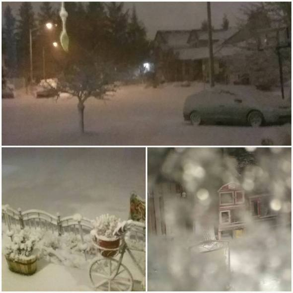 1-2017-winter-snowstorm-vancouver