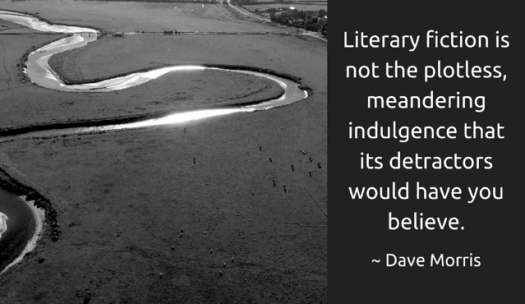literary fiction quote