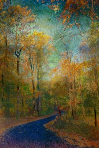 Autumn Path for web (2)