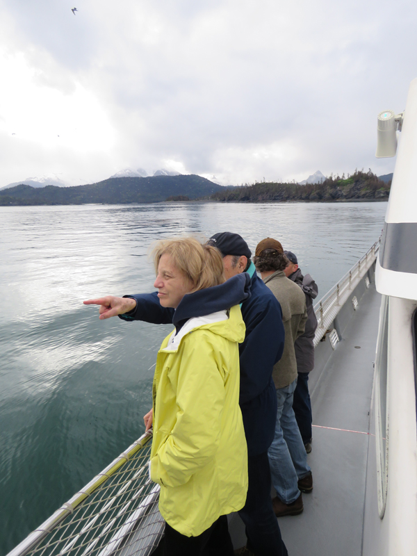 Kachemak Bay Cruise