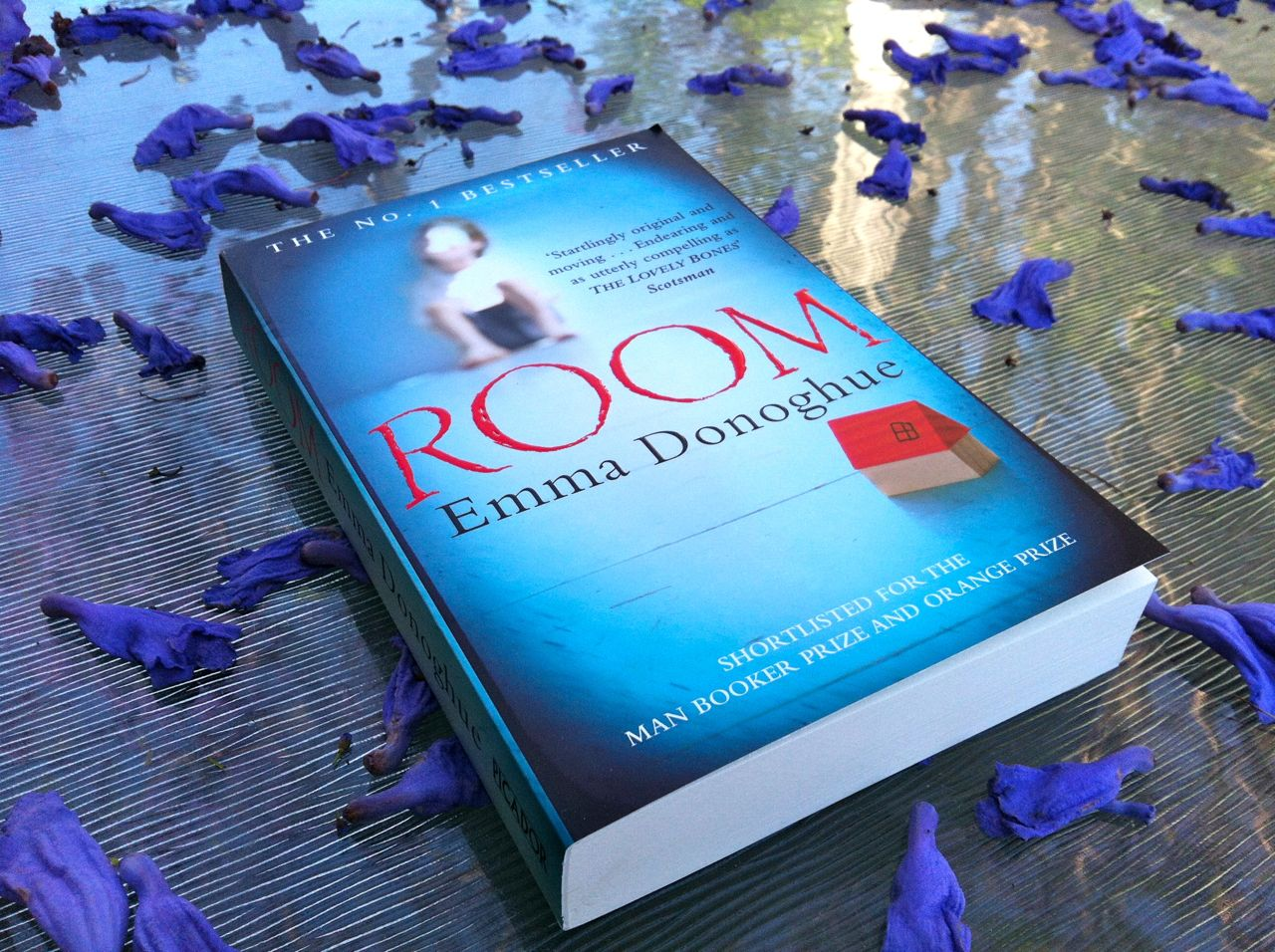 Book Review Room by Emma Donoghue  Writers Edit