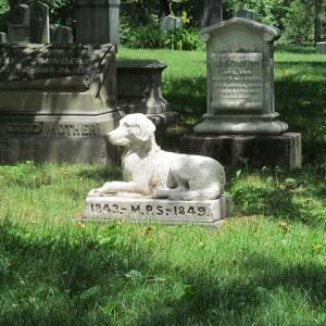 pet, death, grief