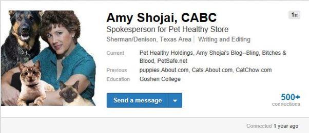 Amy - LinkedIn Header